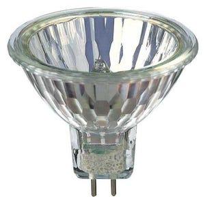 VOLT® 20W 36º Halogen MR16 Bulb | 4000 Hour